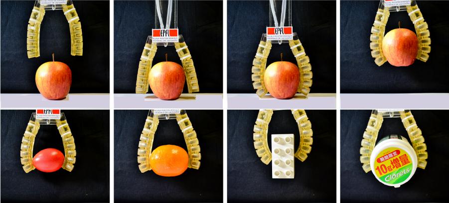 La robotica continua a svilupparsi e a migliorarsi: siamo ormai giunti ai robot edibili che operano anche una volta all'interno del corpo